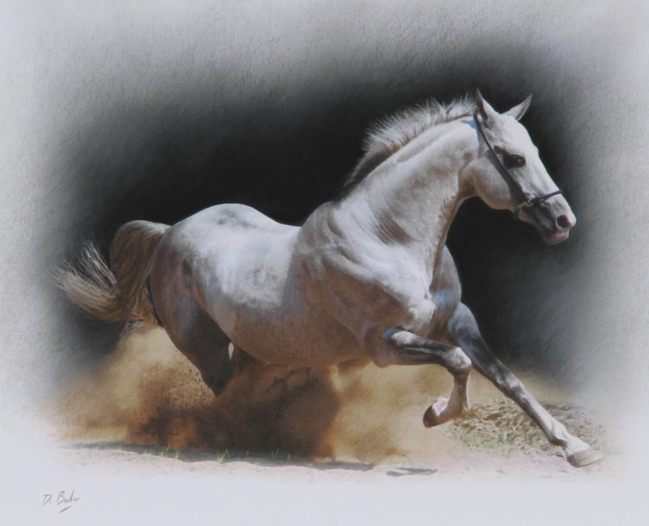 Horse Paintings For Sale Uk